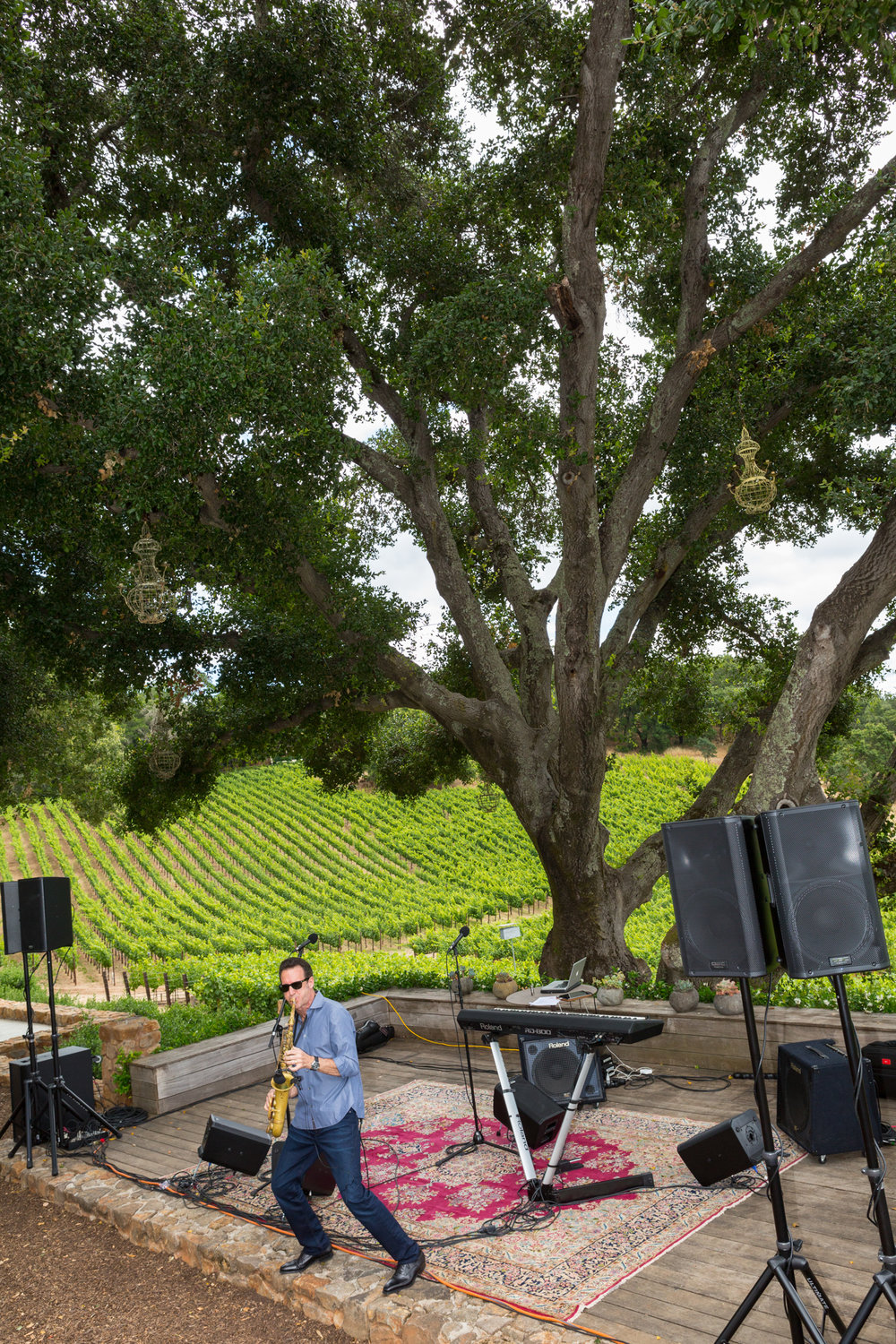 IMG_4827-06-09-17- GARGUILO WINERY - VIP  -chyna photography.jpg