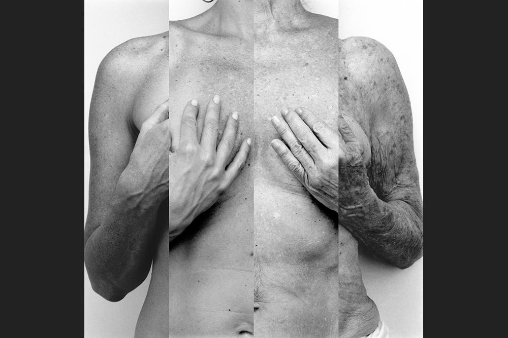 torso1.jpg