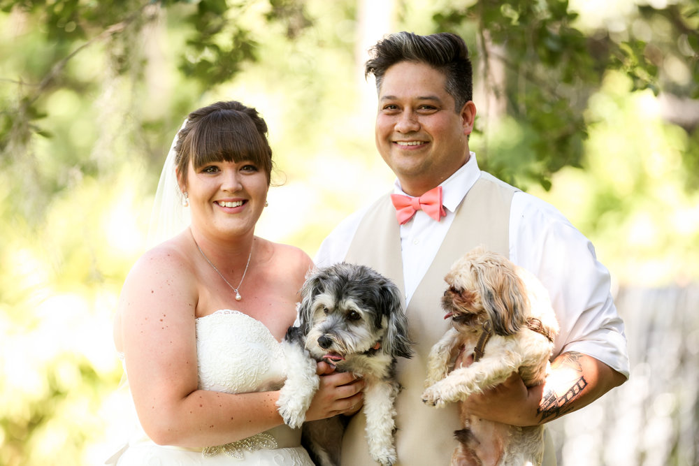 orlando-wedding-photographer-live-happy-studio-puppies-dogs-portrait-bride-groom-mission-inn-resort.jpg