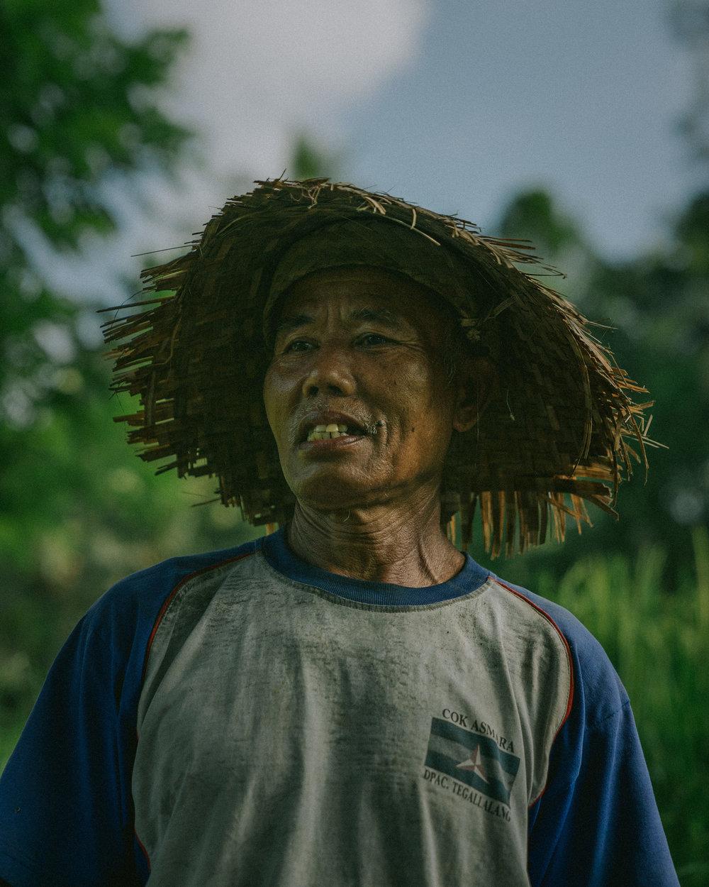 TEGALALANG: rice paddy worker.