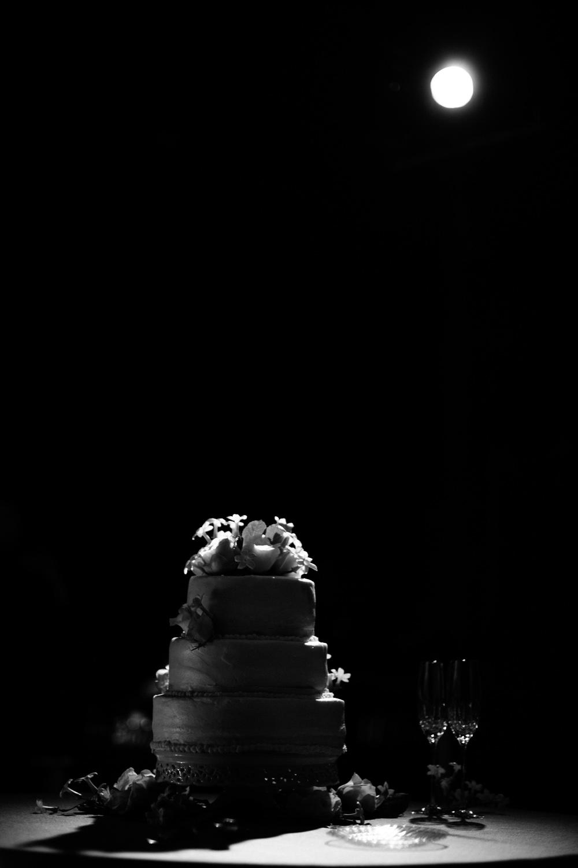 2013.04 Wade Becca Wedding-334.jpg