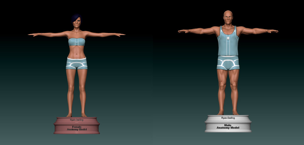 Male andFemale Bundle  - Anatomically Accurate 3D ModelsPrice: $1000Poly Count: 32 MilFormat: .ztl, .obj, .mb,