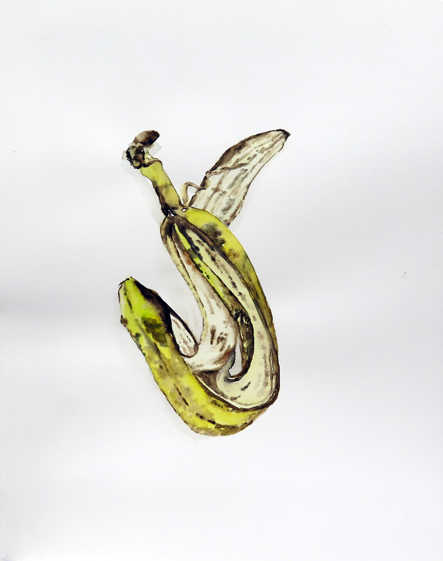 Banana Peel 01   Watercolour on paper, 10.6 in. x 13.8 in. 2013