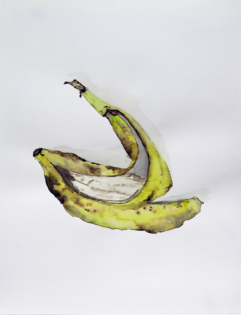 Banana Peel 02   Watercolour on paper, 10.6 in. x 13.8 in. 2013