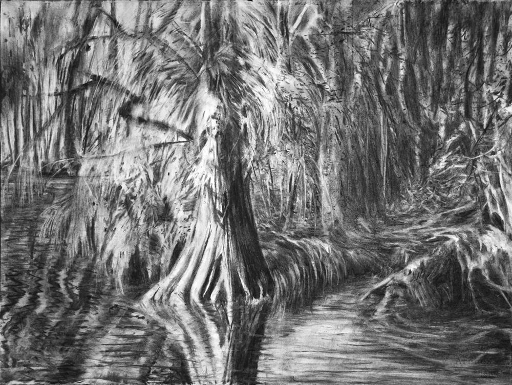 Swamp 01 small.jpg