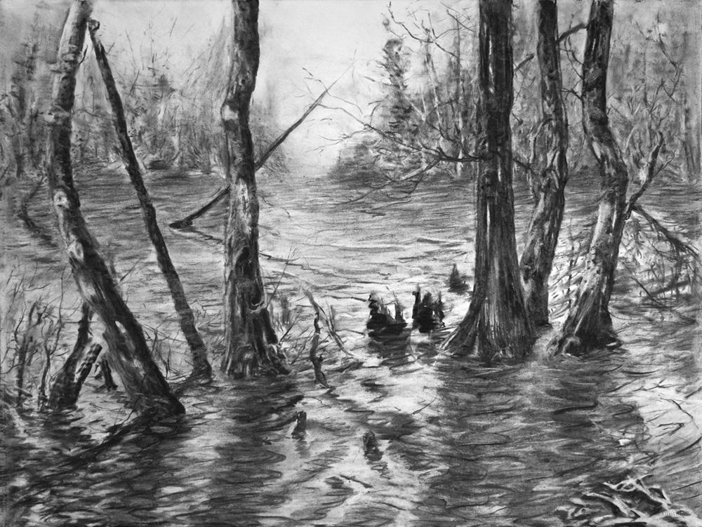 Swamp 03 small.jpg