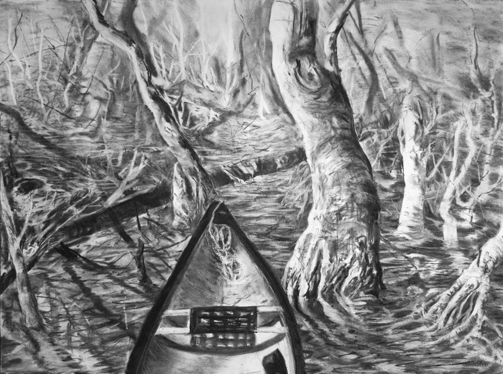 Swamp 05 small.jpg