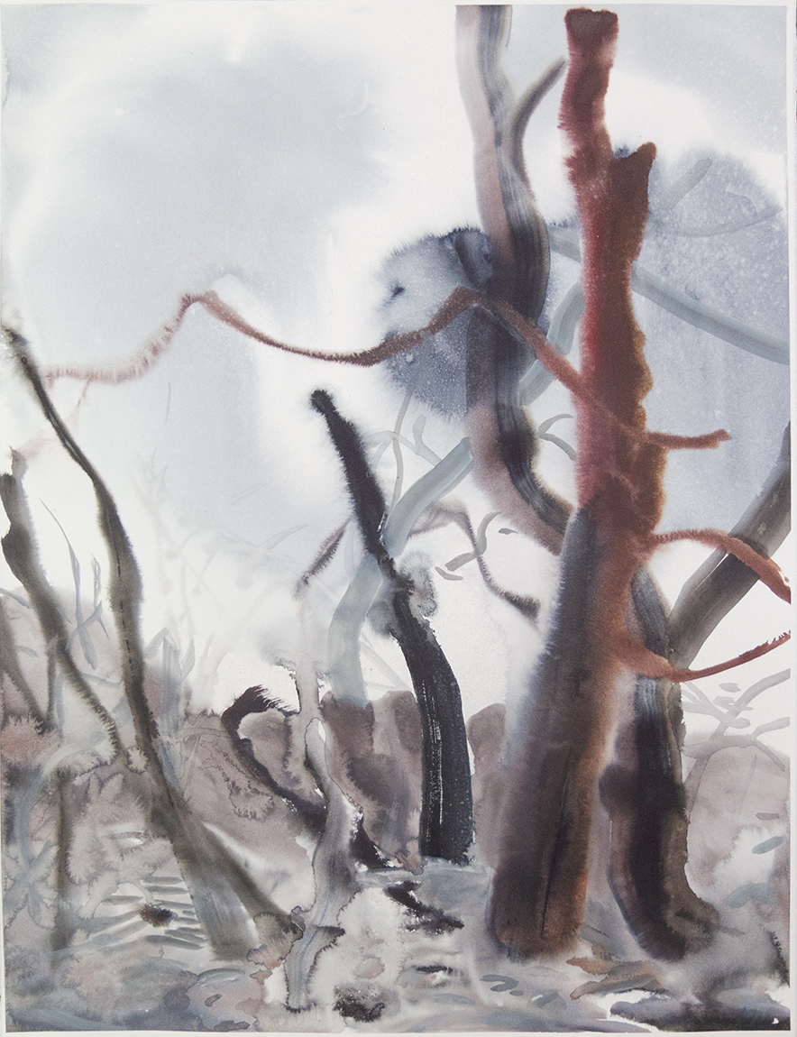 """Wienerwald 04"" Watercolour on Arches paper. 30"" X 22.5"", 2015"