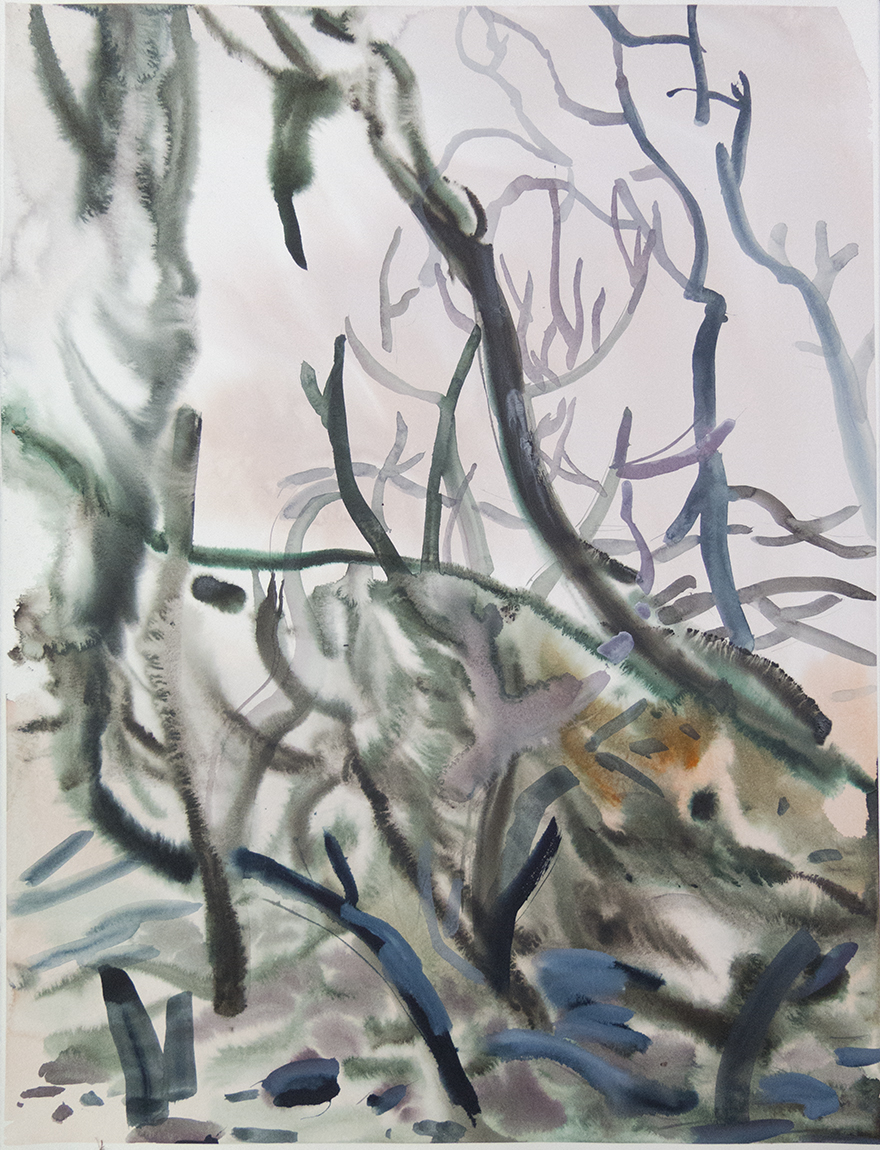 """Wienerwald 07"" Watercolour on Arches paper. 30"" X 22.5"", 2015"