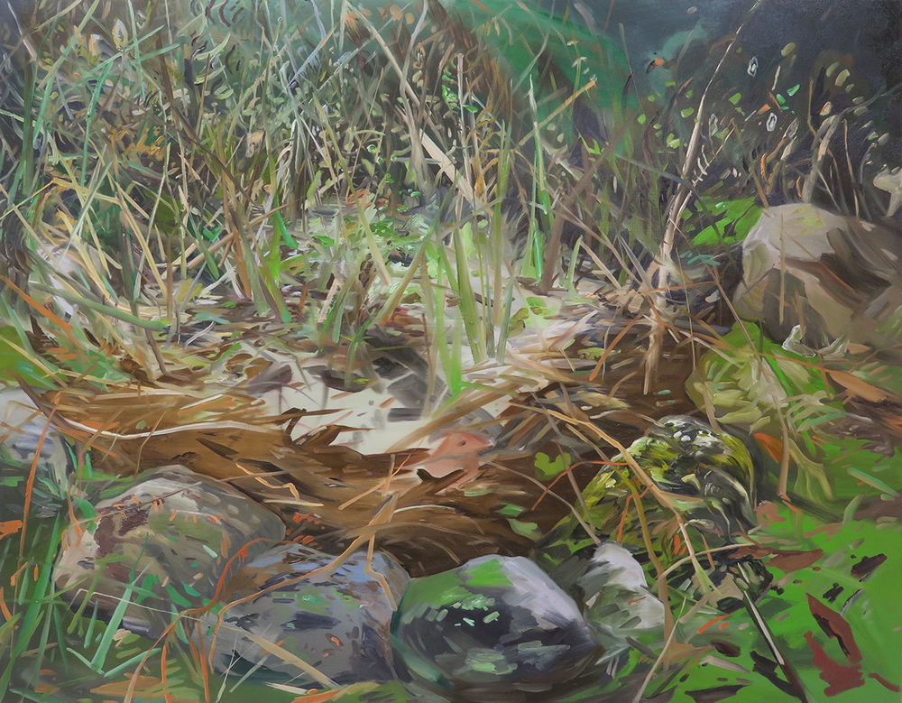 "Pond Out Front , 48"" X 60"", Oil on canvas."