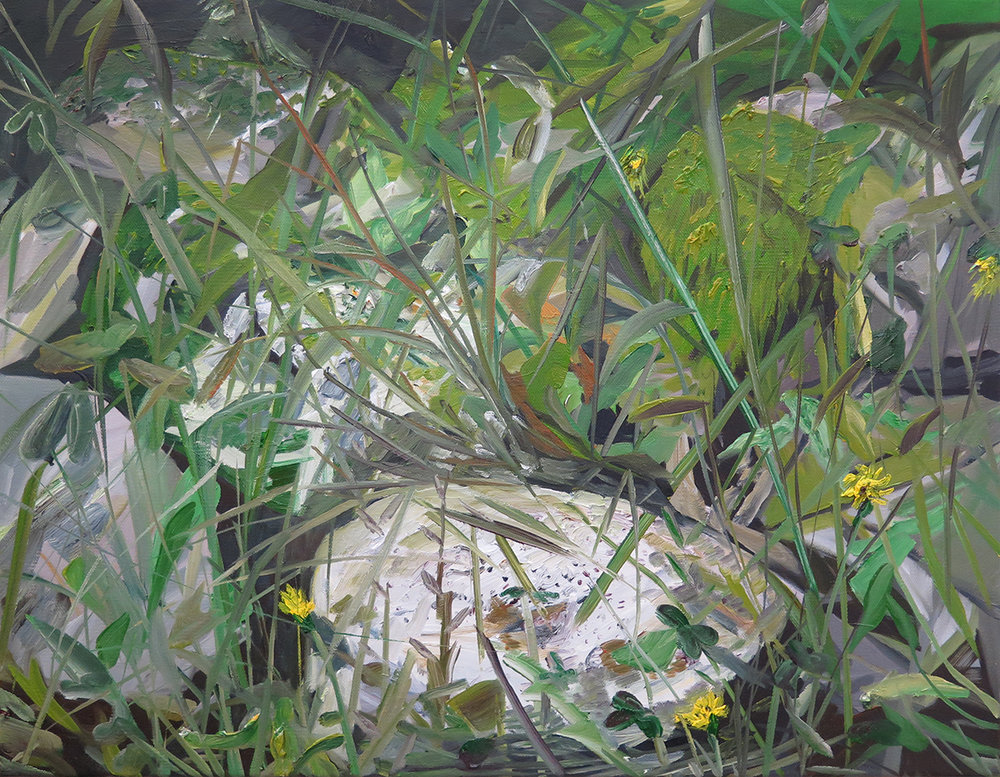 """""""Grass in the backyard"""" Oil on canvas, 16"""" x 20"""""""