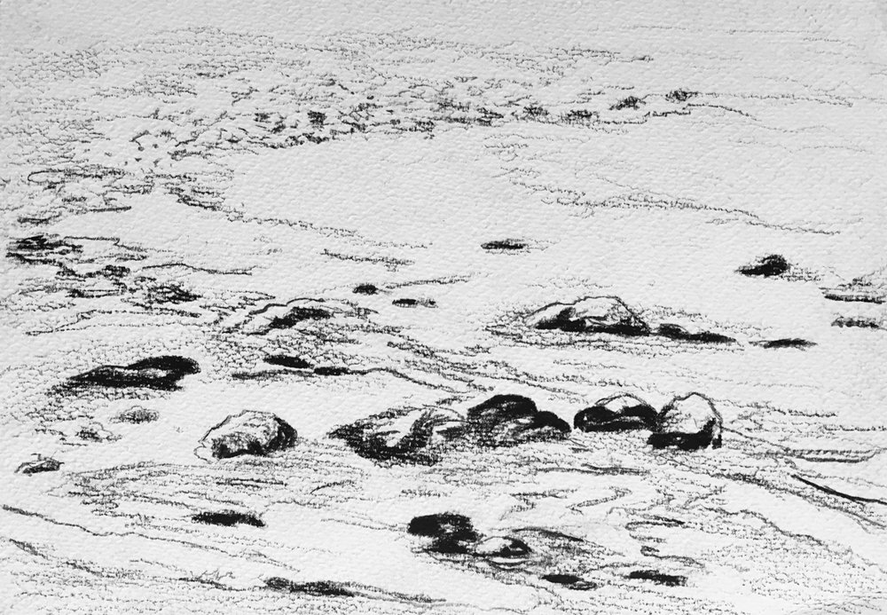 West Coast Trail field sketches  Graphite on paper