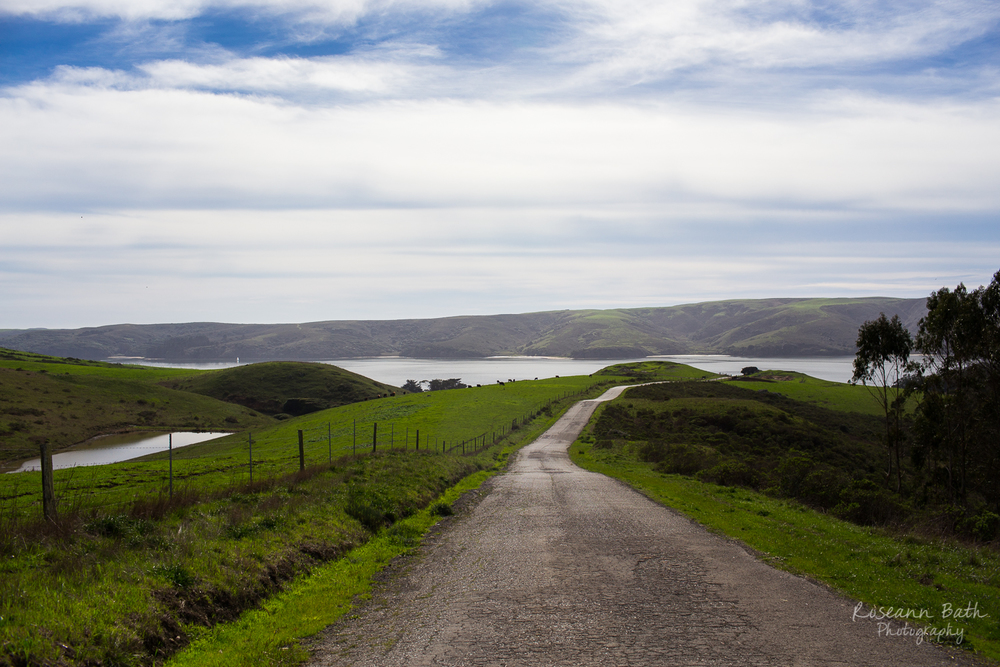 Tomales Bay from Clark Road