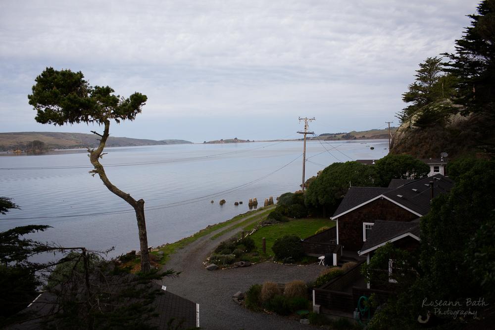 Inn on Tomales Bay