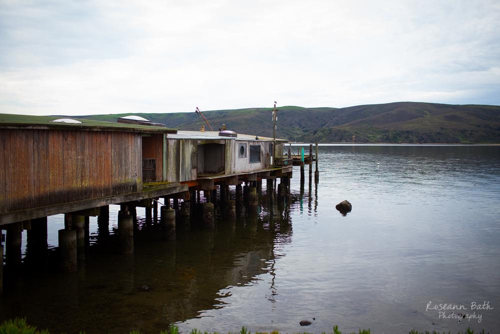 Ed's Dock, Tomales Bay