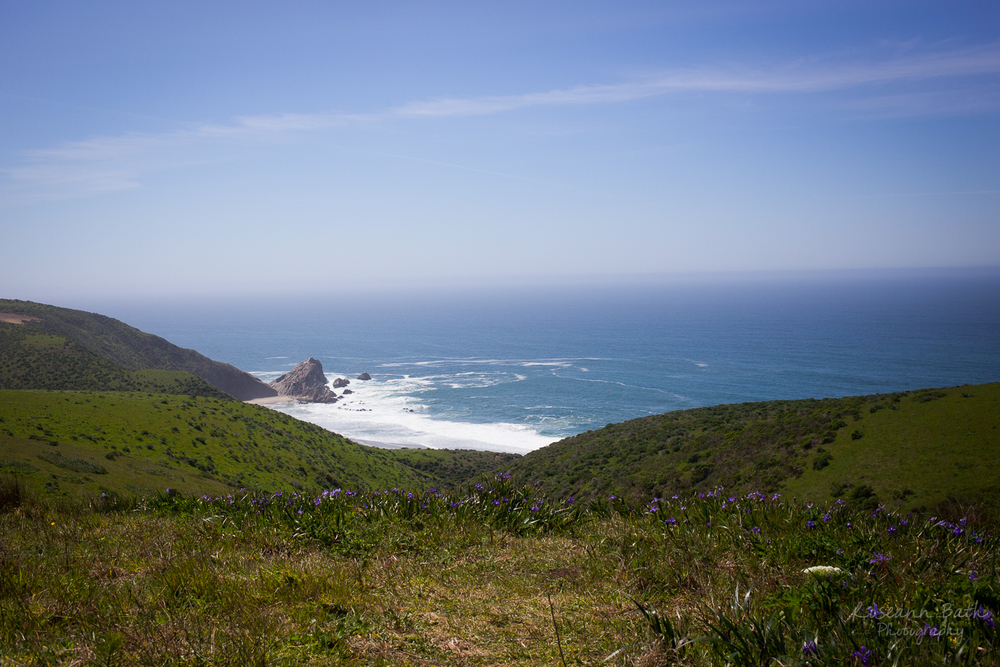 McClures beach from Tomales Point Trail