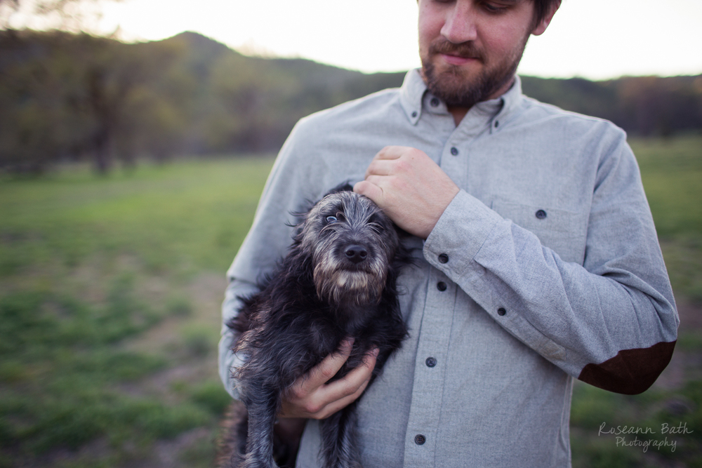 Edie the wonder pup