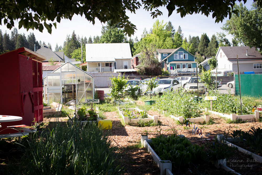 Grass Valley Charter School Garden