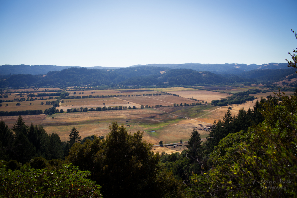 Willits Little Lake Valley from Red Hill