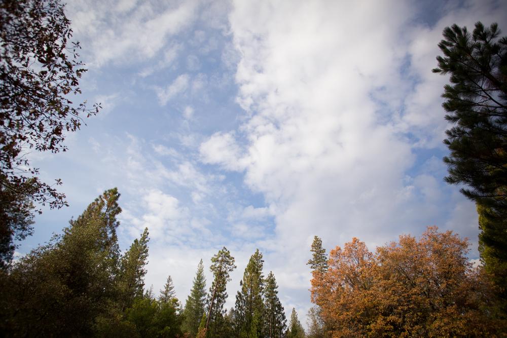groveland skies