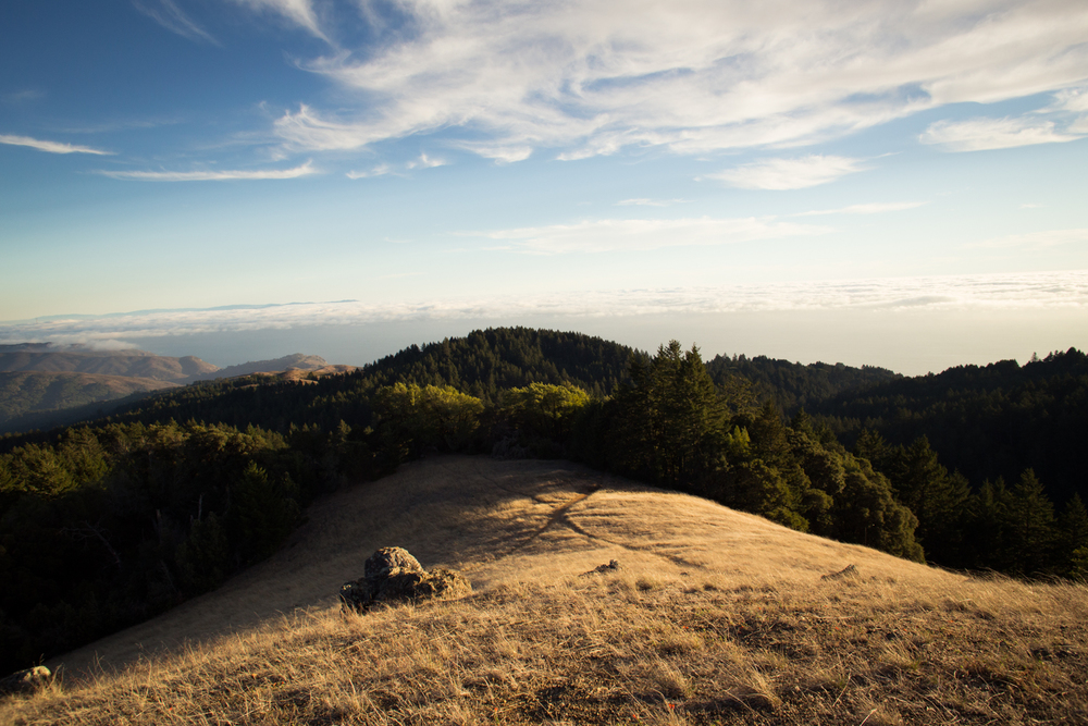 mount tamalpais hike view
