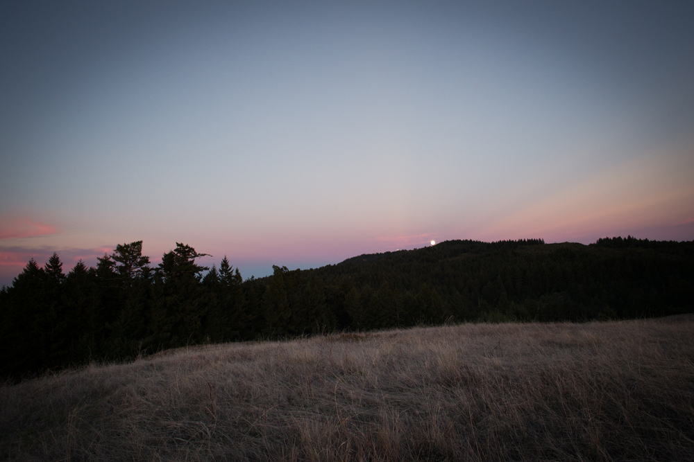 moonrise mount tam