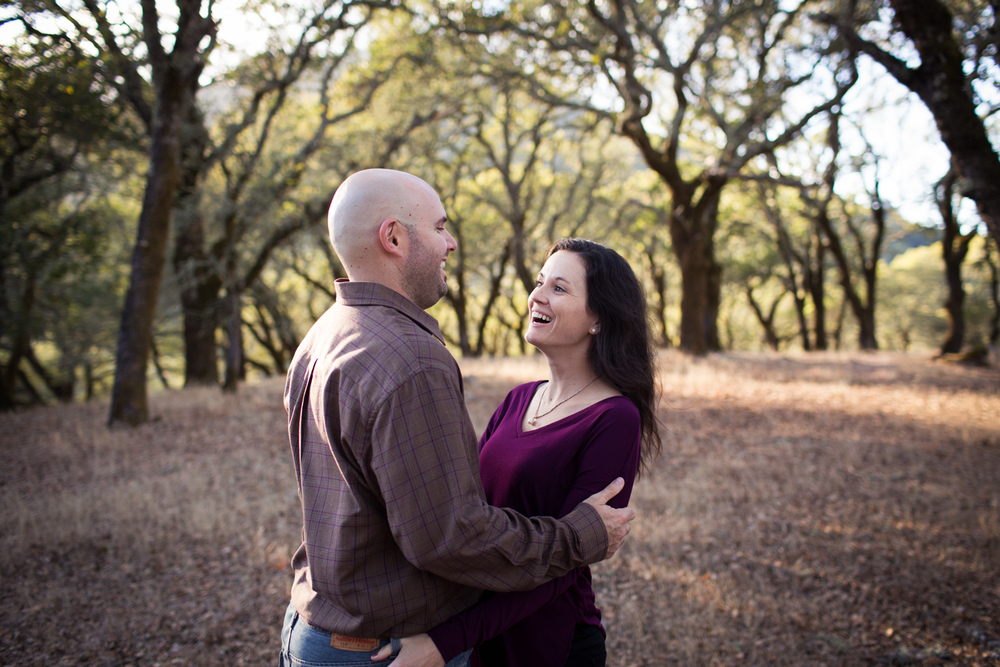 engagement in the trees sonoma county