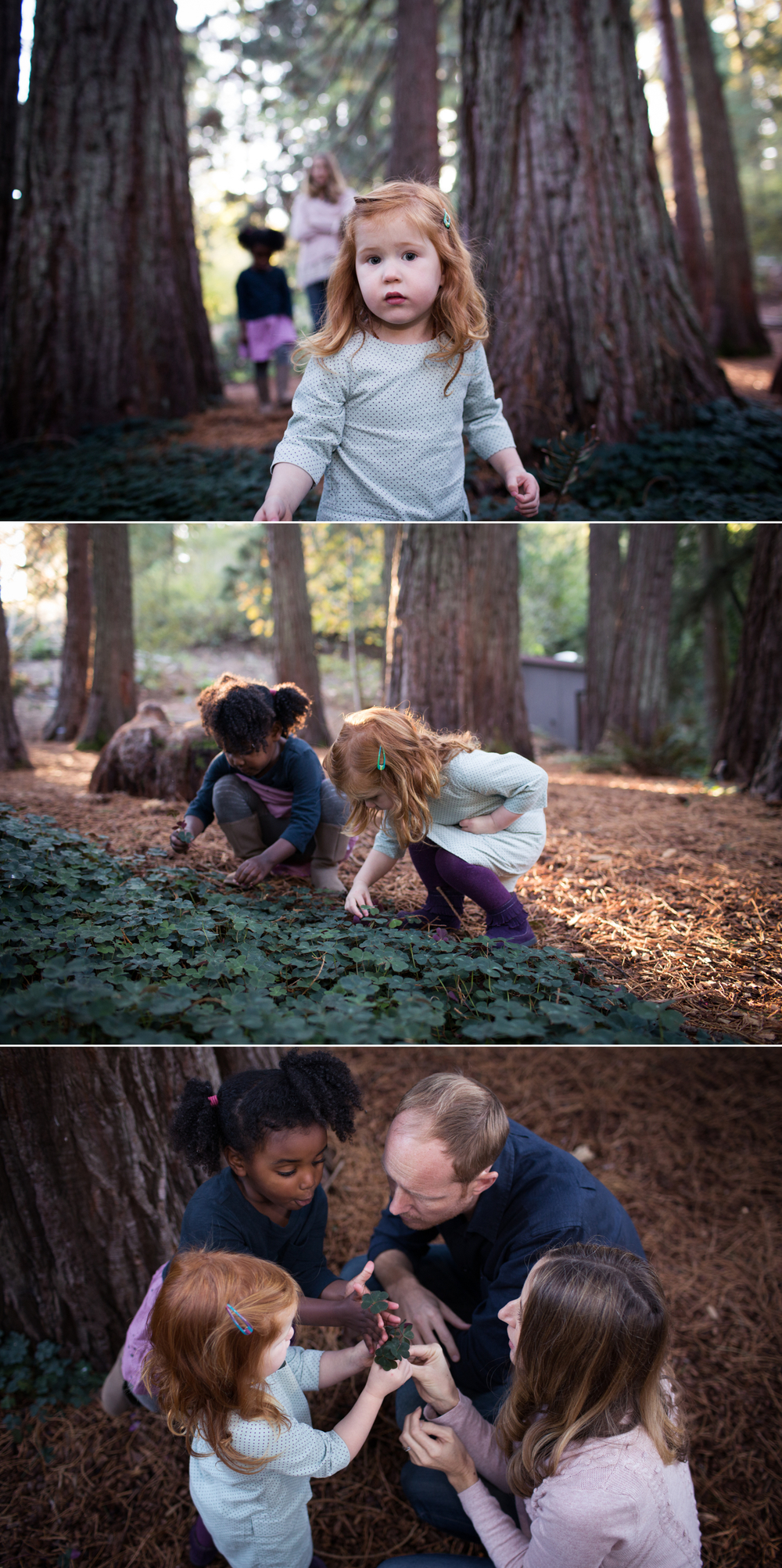 family session tilden park botanical garden