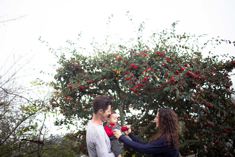 family lifestyles photography east bay
