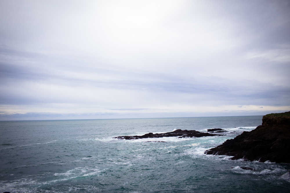 Mendocino Coast Pacific Ocean