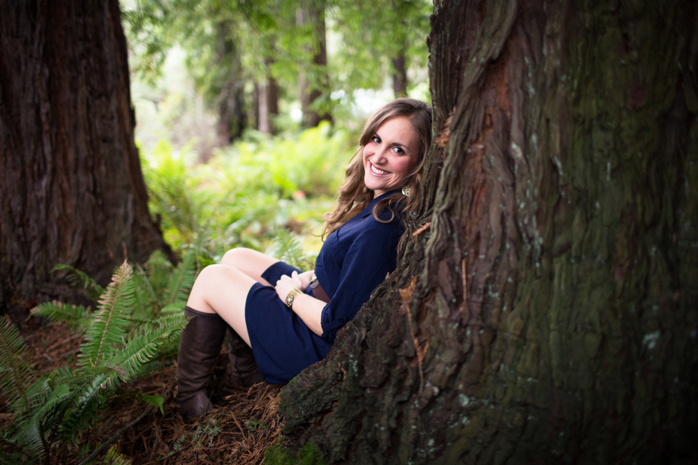 redwood tree portraits