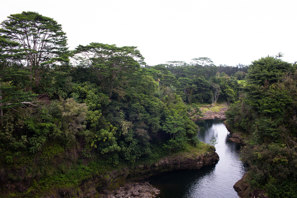 Rainbow falls Hilo Hawaii Big Island