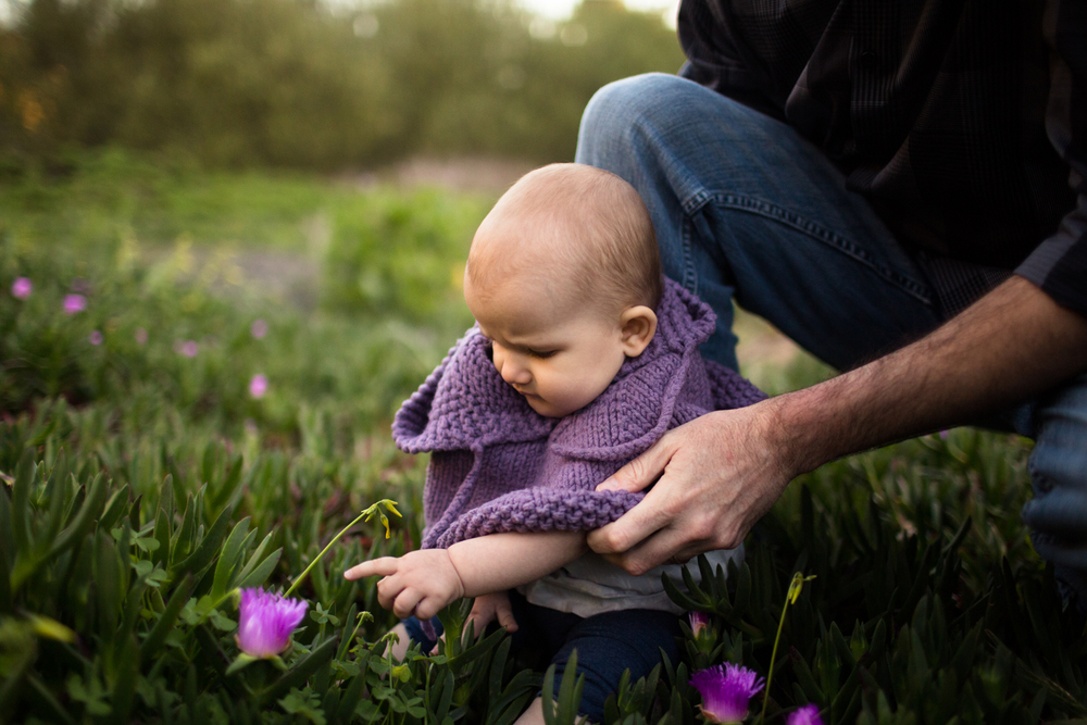 baby in the ice plant