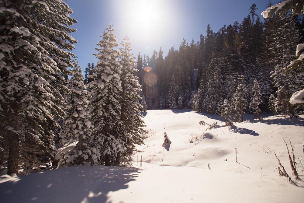 snowshoeing castle peak