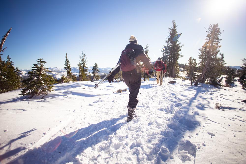 snowshoeing castle pass