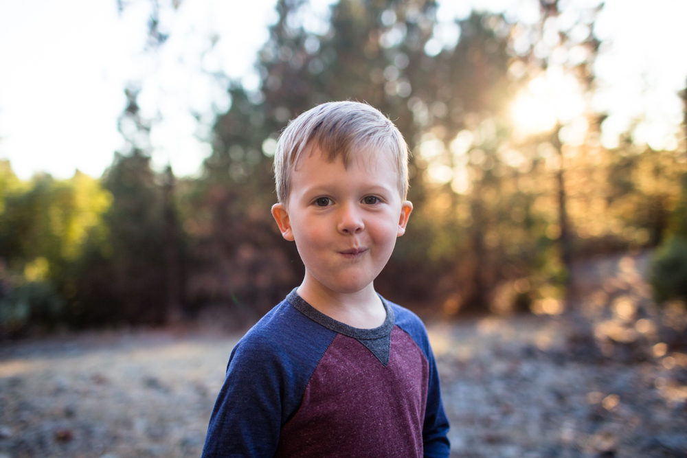 grass valley child portrait photographer