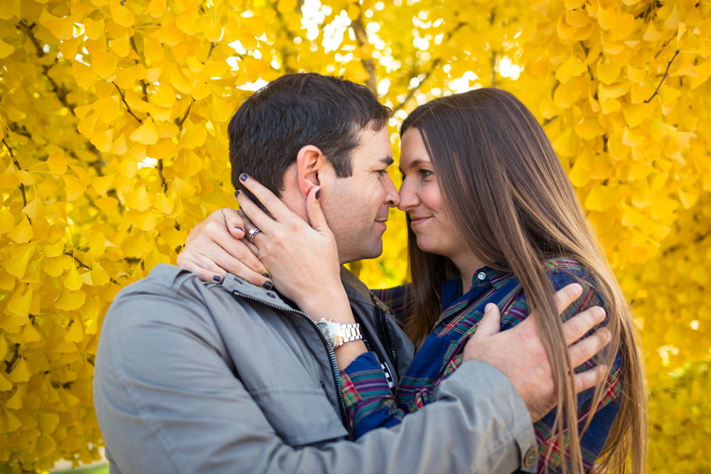 grass valley engagement photographer