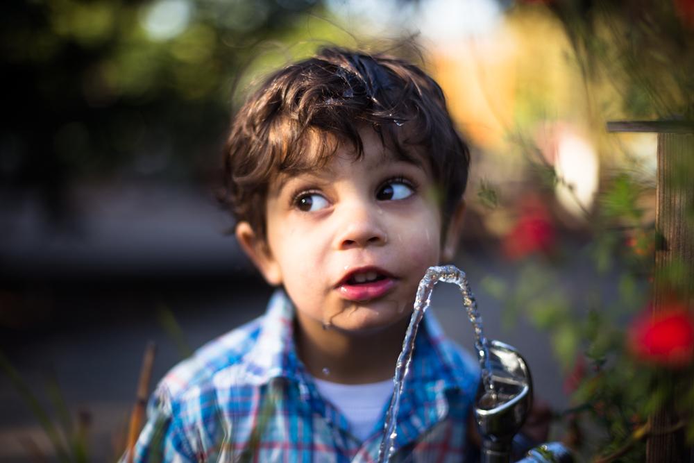 nevada city child portrait photographer grass valley