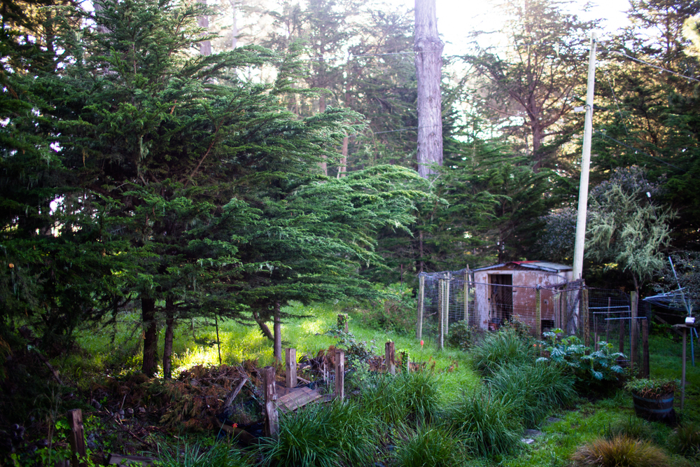 inn on tomales bay marshall california