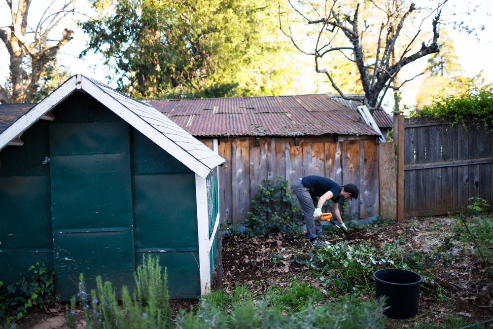 yard progress grass valley lifestyle photographer