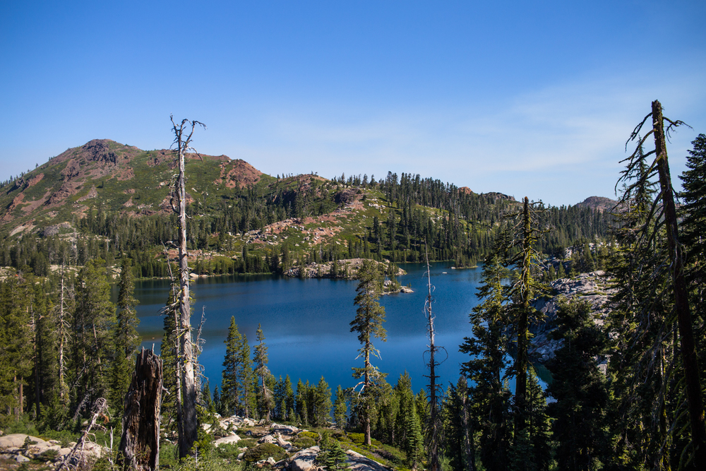 island lake tahoe national forest