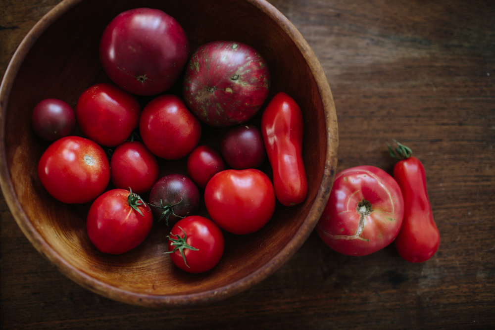 home grown tomatoes nevada city lifestyles photographer