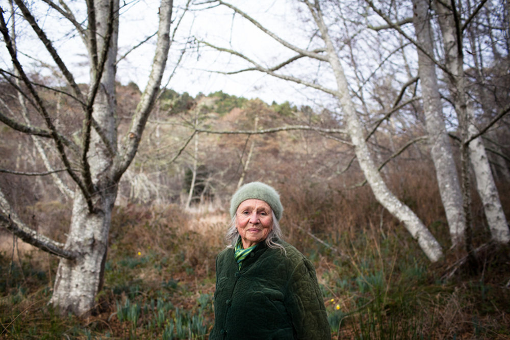 nevada-city-grass-valley-portrait-photographer-23.jpg
