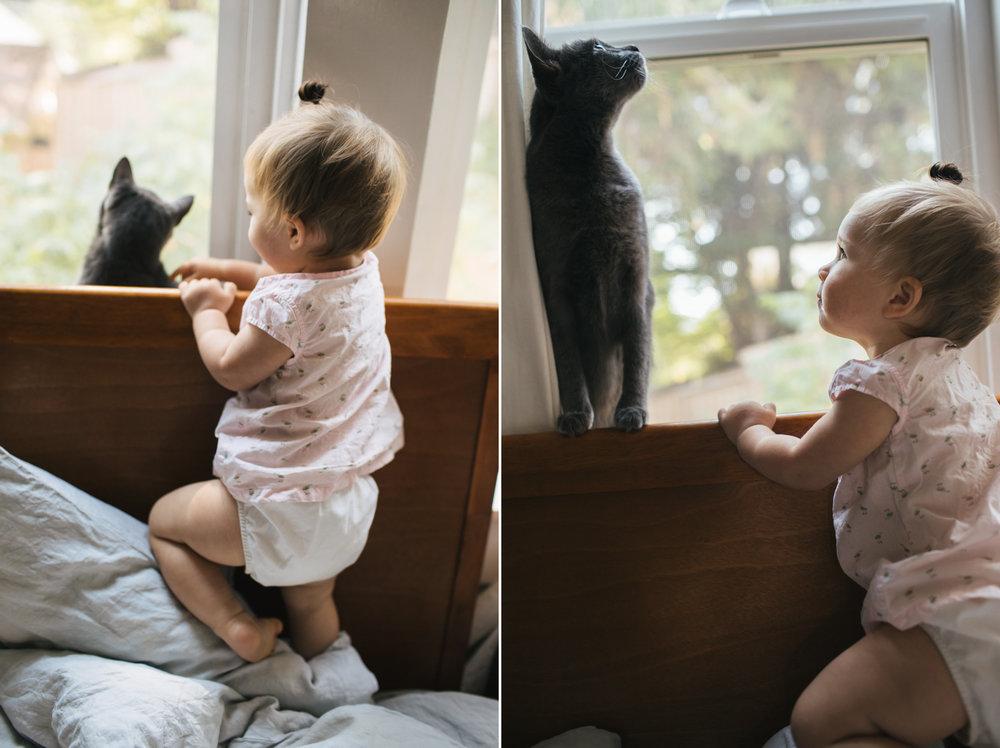 nevada-city-lifestyles-newborn-photographer.jpg