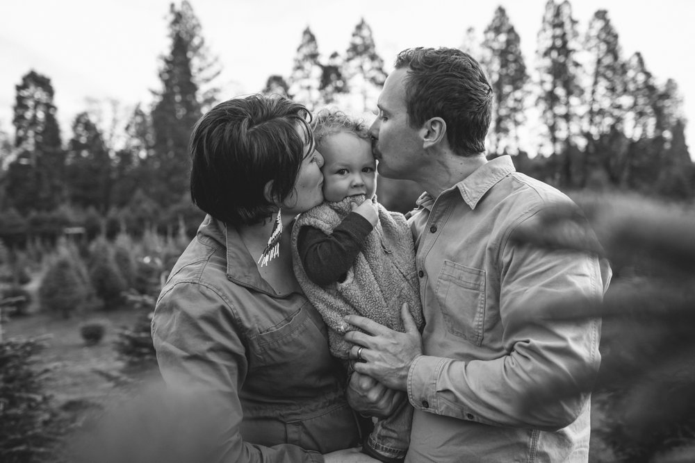 grass-valley-nevada-city-family-photographer-7.jpg