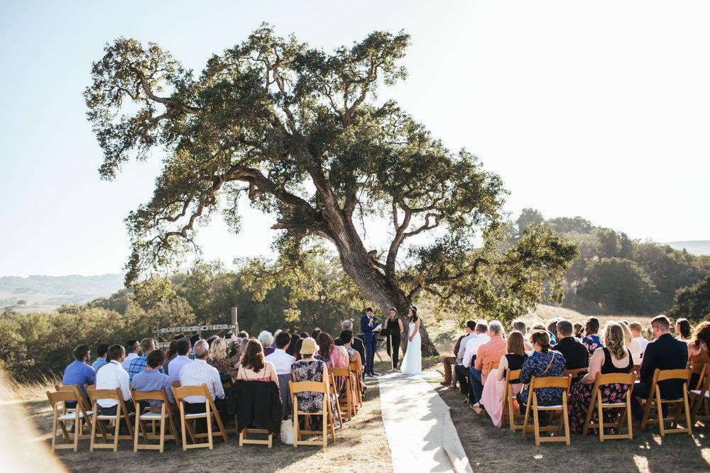 monkey-ranch-wedding-petaluma-photographer-1.jpg