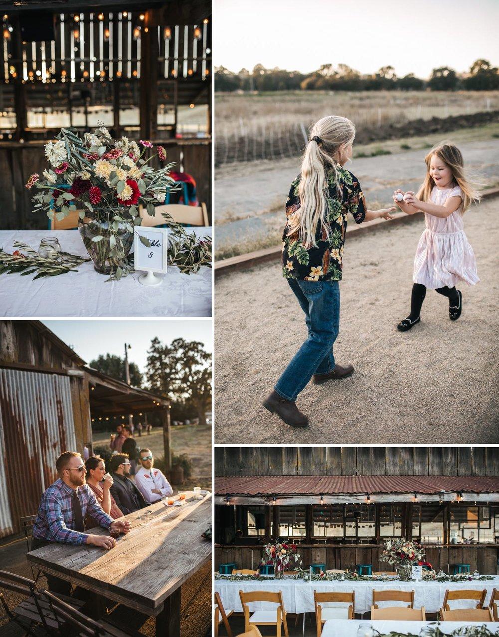 monkey-ranch-wedding-petaluma-photographer.jpg
