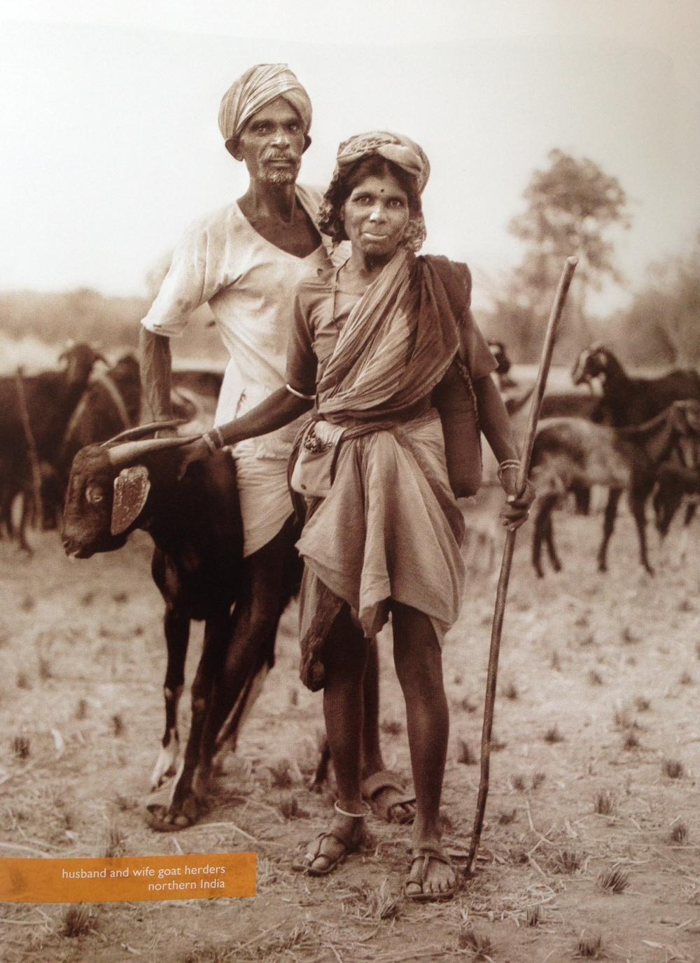 goat-herders-flickerflame