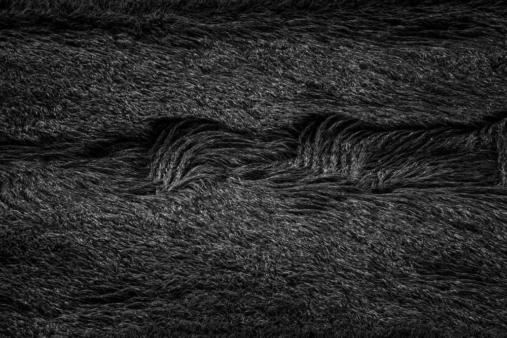 """"""" Landscape #9″ 2014 / photograph / ed.15 /32.9×48.3cm (sheet)50.8x61cm(flamed)"""