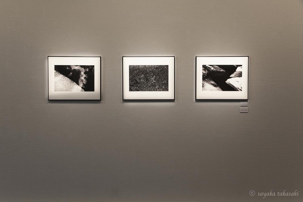 左から untitled3-4,3-5,3-6